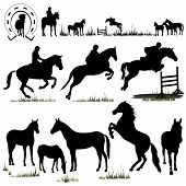horse silhouettes collection - illustration. (isolated on white) poster