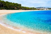 Platja Fenals Fanals Beach in Lloret de Mar at Costa Brava of Catalonia Girona Spain poster