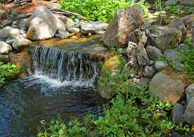 Beautiful Pond And With A Small, Rocky Waterfall