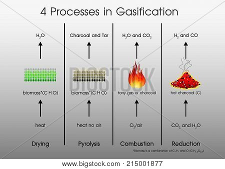 4 processes in Gasification Drying Pyrolysis Combustion Reduction. Illustration vector..