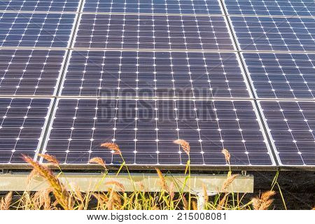 Solar power panels Photovoltaic modules for innovation green energy for life