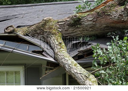 Storm Damage To A Roof