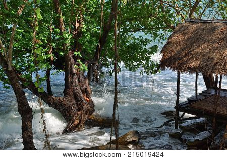 Gazebo on the shore of the Gulf of Siam among the thickets of mangrove trees Koh Samet island Thailand
