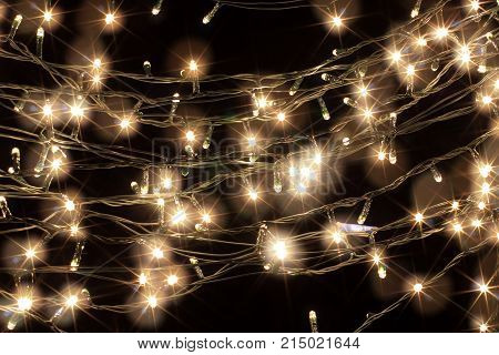 Christmas Fairy Lights on a Black Background