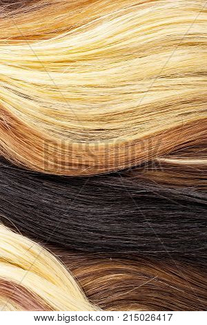 Real woman hair texture. Human hair weft, Dry hair with silky volumes. Real european human hair wallpaper texture. Brown blond dark blonde and black. Texture background.