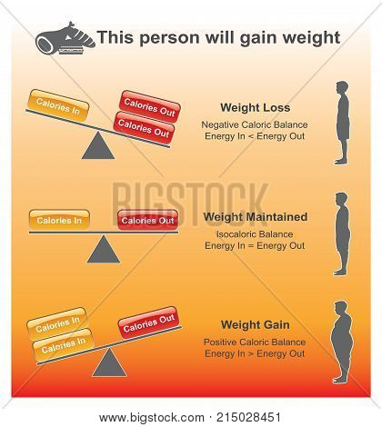 Calories are units of energy. Various definitions exist but fall into two broad categories. Illustration vector.