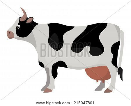 Cow farm animal funny cartoon vector illustration cattle mammal nature beef agriculture. Domestic rural bovine horned cartoon buffalo.