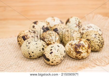 Group of quail egg close up on sack texture with frayed edges on wooden background