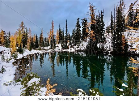 Little lake and yellow trees reflected in calm water. First snow on mountains and golden larches reflected in clear mirror lake. Blue lake in North Cascades National Park. Winthrop Seattle. WA. United States.