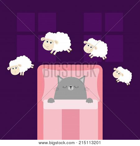 Cute sleeping gray cat. Jumping sheeps. Cant sleep going to bed concept. Counting sheep. Animal set. Blanket pillow room two windows. Baby collection. Flat design. Violet background. Vector