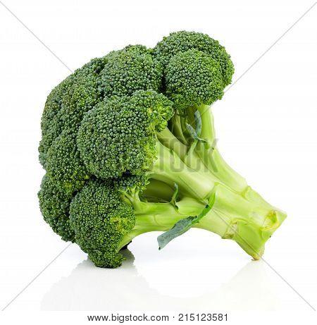 fresh broccoli vegetable, isolated on white background