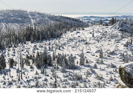 View from Dreisessel. Winter landscape with rock in Sumava Czech republic