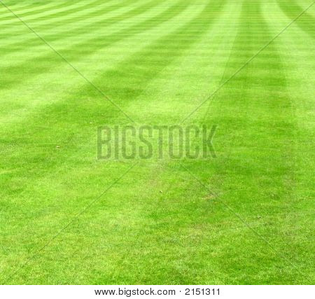 Narrow View Of Sports Lawn