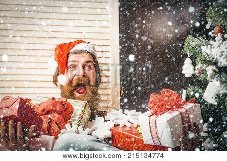 Santa Claus Man With Present Box At Christmas Tree.