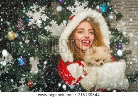 New Year Of Dog, Girl Hold Puppy.