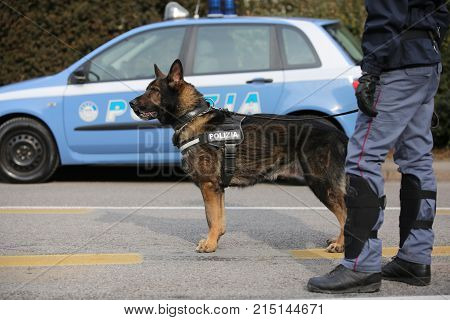 Vicenza, Vi, Italy - January 28, 2017: German Shepherd Police Dog And Police Italian Car