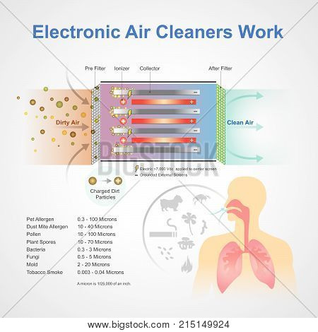 Electronic air cleaner system. An air purifier is a device which removes contaminants from the air in a room. These devices are commonly marketed as being beneficial to allergy sufferers and asthmatics, and at reducing or eliminating second hand tobacco s