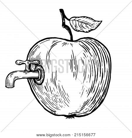 Apple fruit with tap engraving vector illustration. Scratch board style imitation. Hand drawn image.