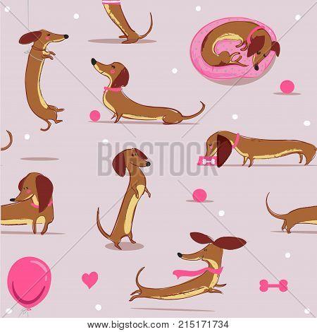 seamless pattern with cute cartoon dachshund. vector illistration