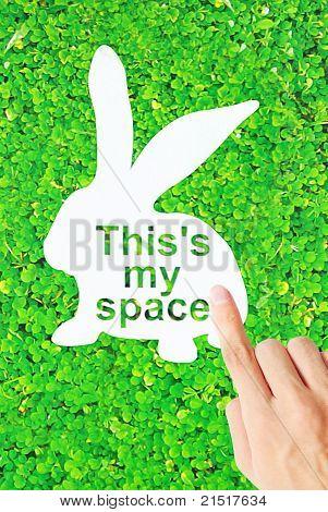 Rabbit Space