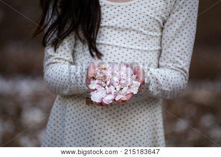 girl holdig white - pink almond flowers