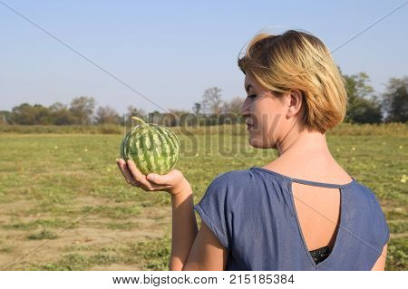 Girl With A Watermelon In Her Hand. Search For Watermelons In The Field Of Melons. Found A Watermelo