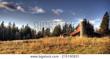 A lone silo on a farm in Bellingham, WA.