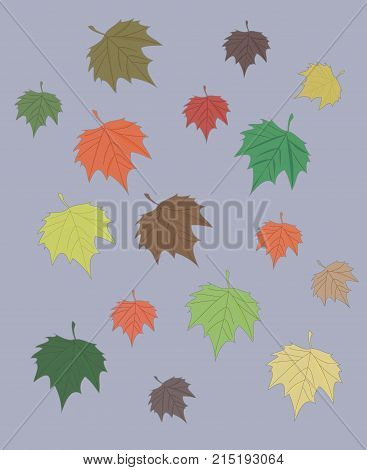 colorful red green yellow orange maple leaf autumn decorative falling leaves background