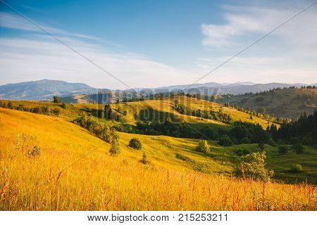 Great alpine highlands in sunny day. Location Carpathian national park, Ukraine, Europe. Picture of wild area. Scenic image of hiking concept. Explore the environment. Discover the beauty of earth.