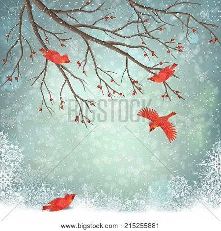 Vector winter landscape. Frosty tree and red birds