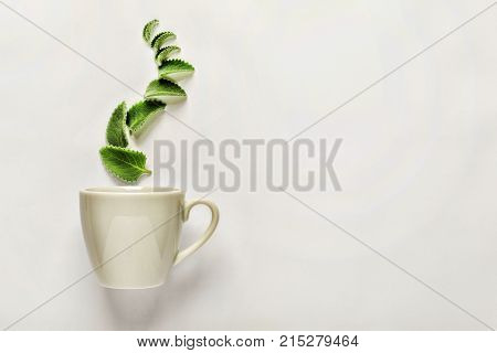 Style Minimalism. A Cup Of Fresh Green Tea Or Herbal Tea With Green Mint Leaves, Above, The Concept