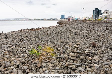Stone Beach At Atlantic Coast In Reykjavik City