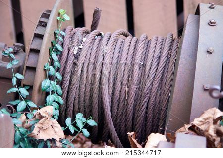 Old metal cable rusting in leaves on spool