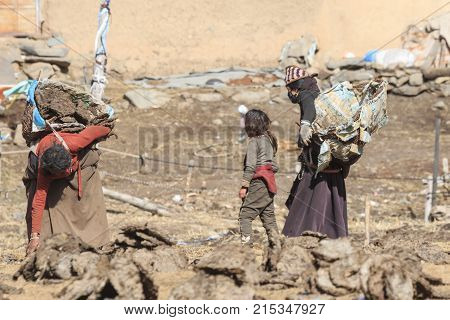 Chengdu, China - November 15, 2017: Tibetan Family In A Remote Part Of Sichuan Collecting Yak's Dung