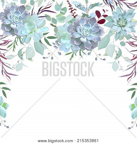 Semicircle garland herbal frame arranged from plants, branches, leaves, succulents and berries on white background. Echeveria, eucalyptus, burgundy red agonis. All elements are isolated and editable