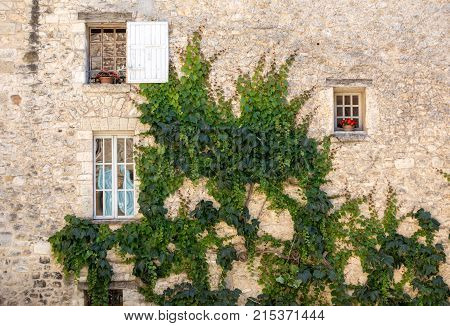 old tenement house overgrown with ivy in Sault Vaucluse department in Provence region France
