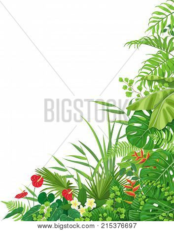 Colorful leaves and flowers of tropical plants floral background with space for text. Vertical side corner border made with monstera fern palm fronds. Tropic rainforest foliage.