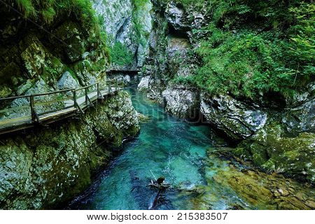 Breathtaking view over colorful Radovna river in Vintgar Gorge Slovenia