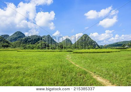 Beautiful countryside scenery in summer, Guilin, China.