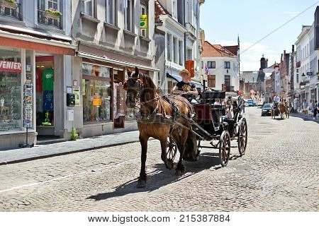 BRUGES BELGIUM - JUNE 10 2017: The horse vehicle on the street of Bruges. The tourist downtown horse crew for walks and excursions of tourists goes on the ancient street with stone blocks