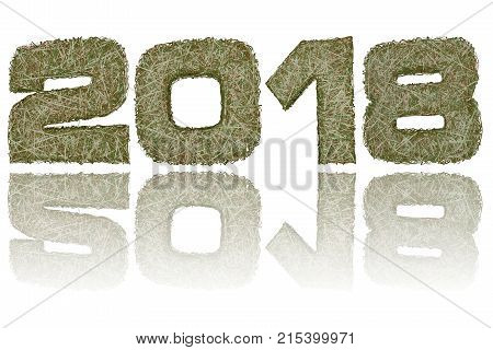 2018 digits composed of military camouflage stripes on glossy white background. High resolution 3D image