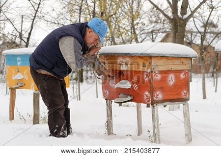 Winter on the apiary. Beekeeper winter monitors the status of bees in the hive. Winter bees in the hives in the yard