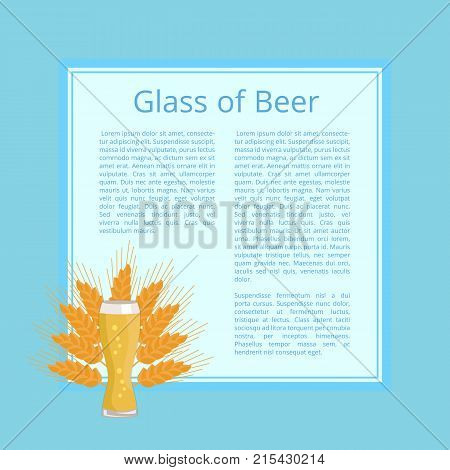 Glass of beer on background of wheat, poster with text and weizen glass. Glassware of light alcoholic drink with bubbles, symbol of Oktoberfest festival