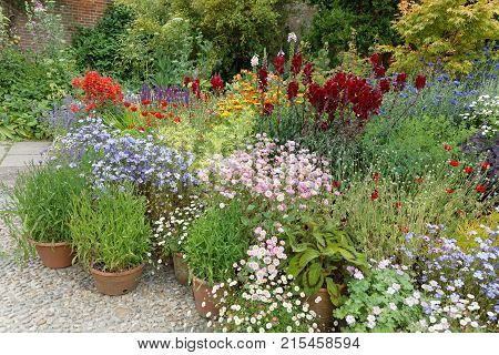 Many flowers in different colors in crocks