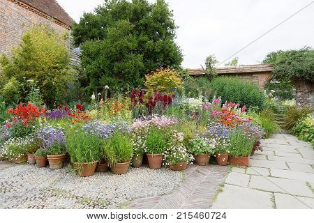 NORTHIAM GREAT BRITAIN - JUN 06 2017: Beautiful flowers and plants in pots a building in the background. June 06 2017 in Northiam Great Britain