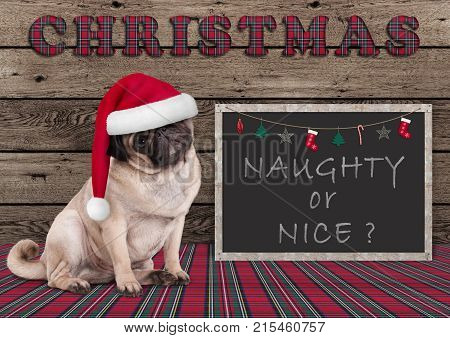 cute Christmas pug puppy dog with santa hat and blackboard with text naughty or nice on wooden background