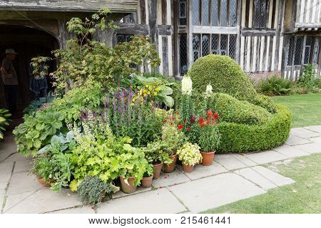NORTHIAM GREAT BRITAIN - JUN 06 2017: PFlowers and plants in pots a building in the background. June 06 2017 in Northiam Great Britain