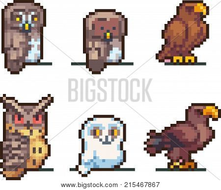 Set of game birds in pixel-art style. Eagle, owl, kite, eagle-owl and other flying killers. Retro 8-bit. For your games, retro, business design. Detailed vector clip art with easy editable colors
