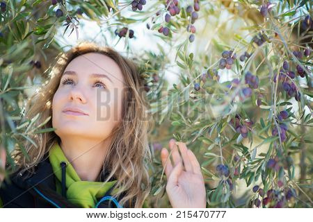 Attractive woman posing in olive trees garden. Woman's portrain over mediterranean olive field ready for harvest. Pretty lady in spanish olive's grove with ripe fresh olives.