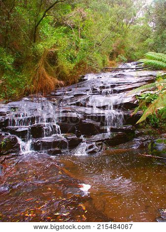 Beautiful rainforest cascade in the Great Otway National Park of southern Victoria Australia
